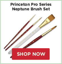 Princeton Pro Series Brush Sets: Neptune