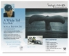 Wyland Great White Whale Tail Acrylic Painting Set