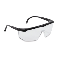 SAS Hornets Safety Glasses