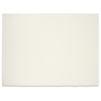 Premier Watercolor Paper, Cold PressPkg of 5 Sheets