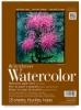 Strathmore 400 Series Watercolor Blocks