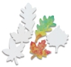 Leaf Shapes, Pkg of 80
