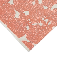 Coral (Coral and Cream)