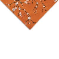 Peach Blossom (Orange)