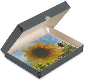 Archival Storage Box, Gray