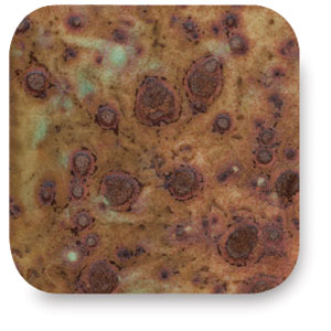 Chocolate Chip, CTL-32