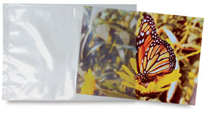 Poly-Bags, Pkg of 20