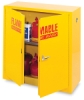 Safety Cabinet, 22 Gallon Capacity