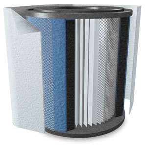 Replacement Filter with Pre-Filter