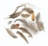 Creativity Street Natural Feather Assortment