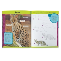 Learn to Draw Exotic Animals