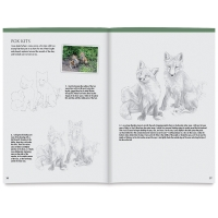 Drawing Made Easy: Forest Animals