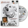 Lee Hammond's Lifelike Drawing DVD