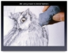 Drawing with Pencil CD-ROM