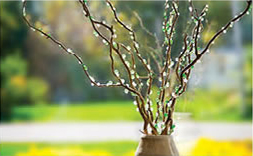 Glittering Branches