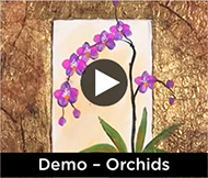 Demo - Orchids