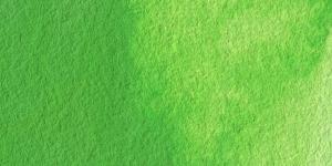 Permanent Green #1