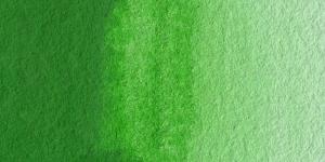 Permanent Green #2