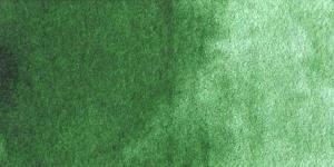 Hooker's Green Light