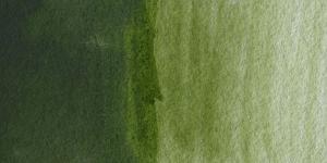 Hooker's Green Deep Hue
