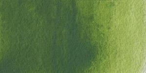 Olivegreen Hue