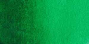 Scheveningen Green
