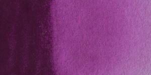 Scheveningen Violet