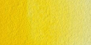 Scheveningen Yellow Medium