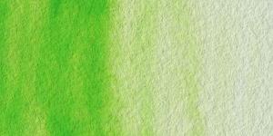 Antique Spring Green