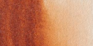 Transparent Mars Brown