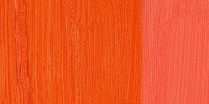 Scheveningen Red Scarlet