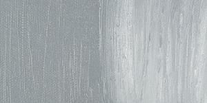 Neutral Gray Medium