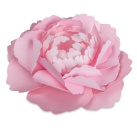 Large Peony, Set of 4(Finished Example)