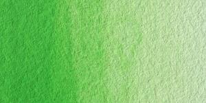 Light Cadmiun Green
