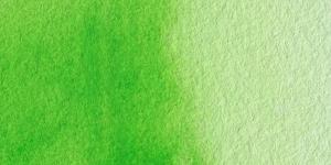 Permanent Yellow Green