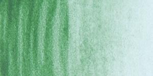 Terre Verde