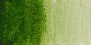 Hookers Green Light