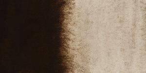 Van Dyck Brown