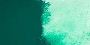 Phthalo Green(Blue Shade)