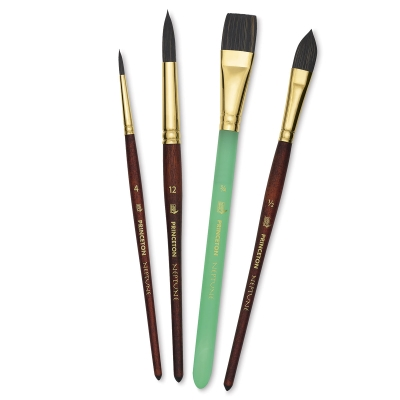 Neptune Series 4750 Pro Series Brushes, Set of 4