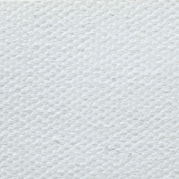 Cotton Canvas, 12.25 oz, Acrylic Primed (Front)