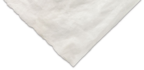 Sekishu Paper