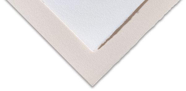 Rosaspina Paper