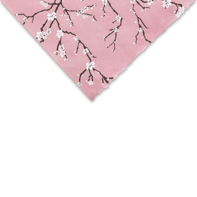 Peach Blossom (Pink)