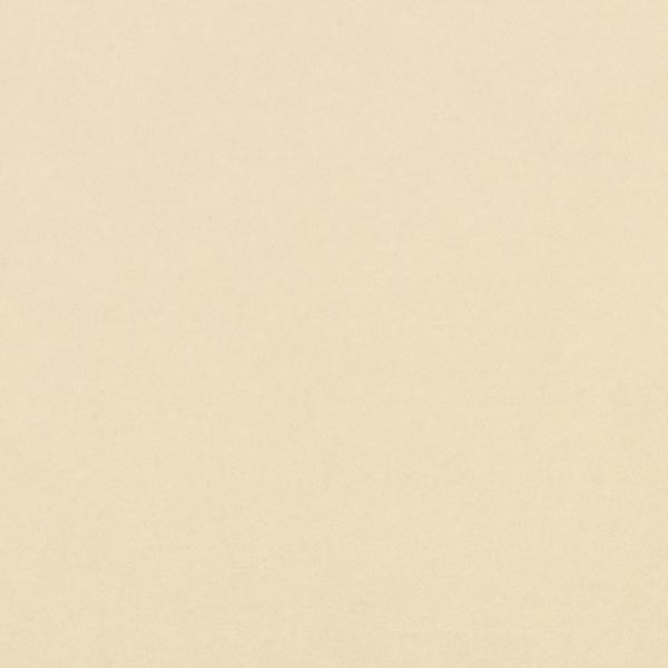 Pale Ivory