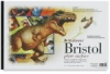 500 Series Bristol, Pad