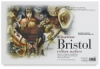 500 Series Bristol, Pack