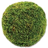 """Moss Ball, 4"""""""