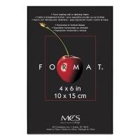 "Format Frame, 4"" x 6"""