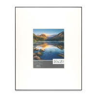 "Image Metal Frame, 16"" x 20"" w/8"" x 10"" artwork size"